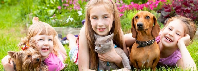 6-Best-Pets-For-Kids